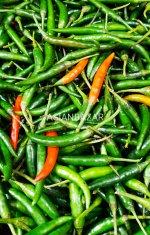 papryczka-chilli