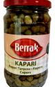 kapary-berrak-removebg-preview